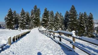 160101 Snow